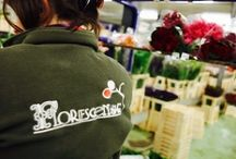 The Florescence Brand!