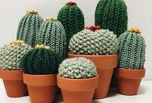 kötött virág kaktusz