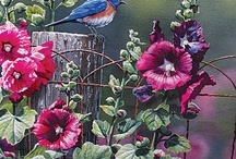 Birds-Art