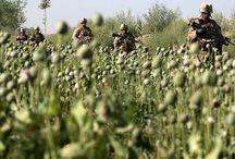 afganisztán-ópium