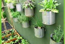 Gardening Posts / These are all posts from The Rural Economist
