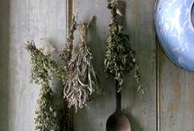 Dry your own herbs / Herbs