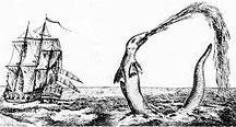 Sea Creature Story Ideas