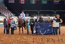 AQHA Superhorses / by American Quarter Horse Association (AQHA)