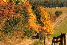 Season~Autumn