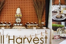 Harvest Decorations / Fall inspiration for my Arizona home;) / by Debby- Little Miss Copycat