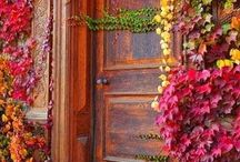 Fall / Bombay Company decor for Fall at bombaycompany.com / by Bombay Company
