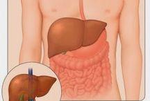 Obat Untuk Penyakit Liver