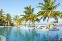 Hotel Maldive / Su https://www.hotelsclick.com/alberghi/maldive/MAE/hotel-maldive.html trovi tutte le informazioni pratiche per organizzare il tuo soggiorno alle Maldive.