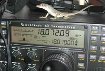Malpelo Is., S.A. Ham Radio DXpedition  / by Richard Moser