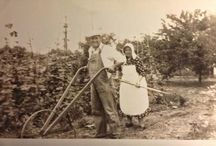 Our Own History / My blog about my family genealogy
