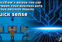 Business data and decision