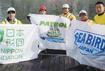 SEA BIRD JAPAN / Sea Bird Japan In 2015 K38 Japan became an instructor partner for the Sea Bird Japan program.  http://www.sb-pwc.jp/about/
