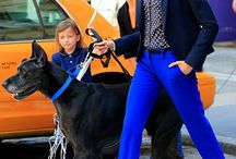 pantalón azul rey