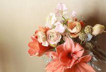 Kukat ja puutarha