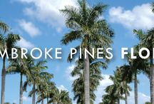 Pembroke Pines / Many cities, including Pembroke Pines in South East Florida, have experienced strong hurricane winds in the past. So we suggest them for buy products to protract their homes.