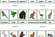 thema VVE dierentuin