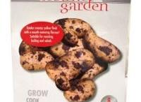 Grow your Own / Market Garden Collection Vegetables Potato, Strawberry, Runner Bean,Vegetable Bulb,  Vegetable Broad Bean, Tomato starter Kit, Indoor Terracotta Growing Kit