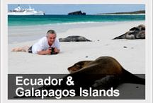 Galapagos Islands and Mainland Ecuador / Ecuador, an exotic land of colors and contrasts, offers a wealth of travel possibilities, a flavor of Latin culture, and a spirit of adventure.