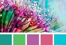 Color trends / good combinations