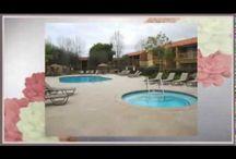 Serena Vista Apartments in Fountain Valley, CA Call (714) 963-1242