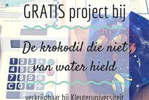Projecten prentenboek