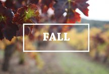 Fall / The Vineyards in Fall