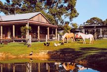 Farmstay Family Accommodation / Botanica Bed and Breakfast, the working farm accommodation in Victoria, Australia.