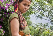 Baie Timur / La baie Timur, originaire du Népal, est récoltée dans les montagnes Népalaises. Ce Zanthoxylum armatum possède des notes de pamplemousse et d'agrumes. Légèrement piquante, elle est à déguster sur une compote d'abricots, des coquilles St Jacques, un filet de canette ou sur des poissons blancs.
