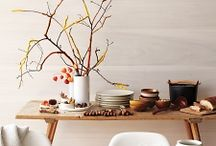 Modern Fall / Modern Fall Inspiration / by Andreia Ransdell