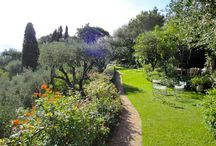 Giardino / gardening