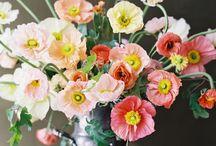 Bouquet and garden flowers