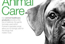 FOREVER ANIMAL CARE