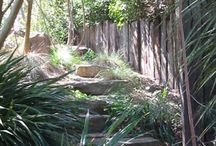 Backyard Ideas / Backyard landscaping  / by Mike Hauser