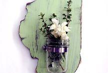 House: Plants