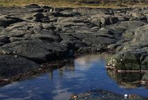 Northumberland / England's most northerly county is Northumberland - this is NorSCA country. www.norsca.co.uk @ICAEW_NorSCA
