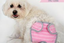 Dogs & Cats clothes