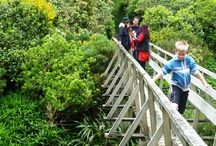 Places to See/Visit in Upper Hutt