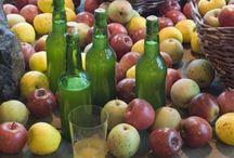 Sidra / Cider