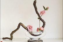 Ikebana / relax at home