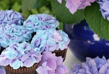 Beautiful Cakes and Cupcakes / by ✄ Kelly Gilbert