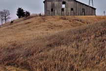 Barns and Farms / by Terri Mittenthal