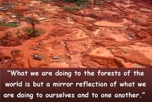 Save Our Forests / by GlobalCofe