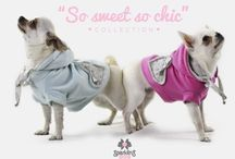 So sweet so chic collection / Spring/Summer 2014 by Sparkling dog