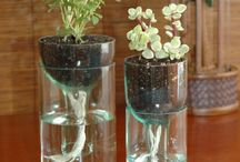 Wine Bottle Planter