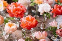 Weddings - Bright Coral and...
