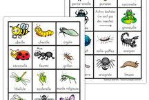 Les animaux et les insectes / Resources for learning about animals and insects in French.