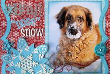Pet scrapbooking / by Mary Olayer