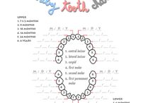 baby teething chart / by Tiffany Reynolds