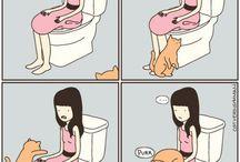 Cat Stuffs